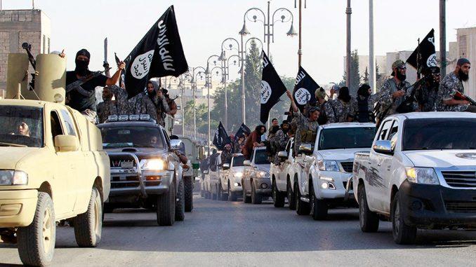Hasta 596 ciudadanos marroquíes habrían perecido en combate en Siria e Irak bajo la bandera de Daesh