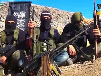 Fotograma extraído de un vídeo subido a la red por el TIP